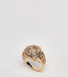 Кольцо с гравированной монетой ASOS DESIGN Curve - Золотой