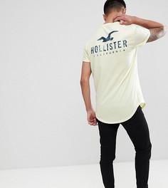 Желтая футболка с закругленным краем и принтом логотипа Hollister эксклюзивно для ASOS - Желтый