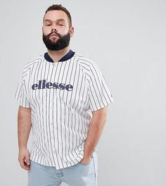 Белая бейсбольная футболка в полоску ellesse PLUS - Белый