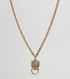 Ожерелье с подвеской в виде дверного молотка с головой льва эксклюзивно для ASOS DESIGN Curve - Золотой