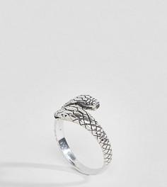 Серое кольцо со змеей ASOS DESIGN - Серебряный