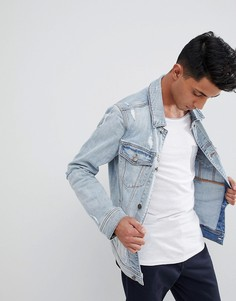 Светлая джинсовая куртка с потертой отделкой Hollister - Синий