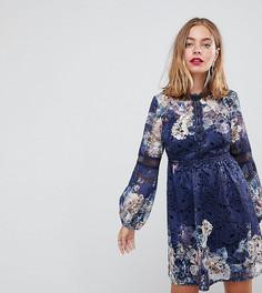 Короткое приталенное кружевное платье темно-синего цвета с цветочным принтом Little Mistress petite - Мульти