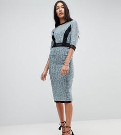 Кружевное платье-футляр миди с контрастной вставкой Little Mistress Tall - Синий