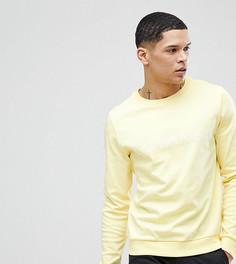 Свитшот с логотипом Calvin Klein - Желтый