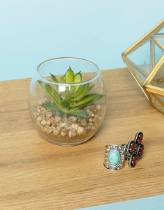 Искусственное растение-суккулент в стеклянном горшочке Sass & Belle - Мульти