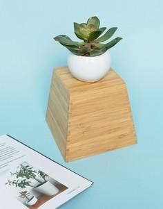 Искусственное растение-суккулент в керамическом горшке Sass & Belle - Мульти