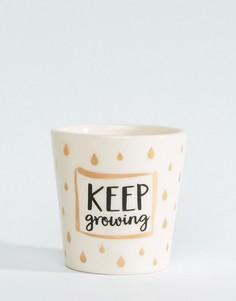 Мини-горшок для растений с принтом металлик и надписью Keep Growing Sass & Belle - Мульти