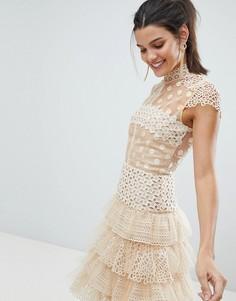 Платье мини из тюля и кружева Bronx and Banco - Бежевый