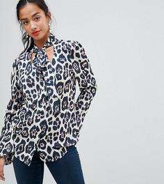 Блузка с глубоким вырезом и леопардовым принтом John Zack Petite - Мульти