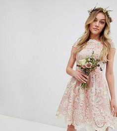 Кружевное платье миди для выпускного с вырезом лодочкой Chi Chi London Petite Premium - Розовый