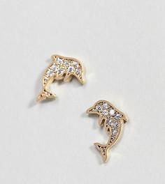 Позолоченные серьги-гвоздики Orelia - Золотой