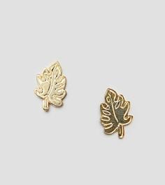 Серьги-гвоздики из позолоченного серебра с пальмовыми листьями ASOS DESIGN - Золотой