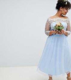 Платье миди с открытыми плечами, кружевом и юбкой из тюля Chi Chi London Plus - Синий