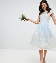 Платье миди для выпускного с открытыми плечами и кружевом Chi Chi London Tall - Синий