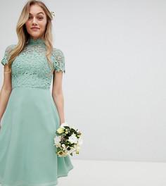 Платье миди 2 в 1 с кружевом Chi Chi London Petite - Зеленый