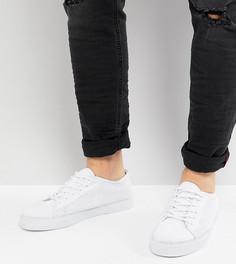 Белые кеды для широкой стопы на шнуровке ASOS - Белый
