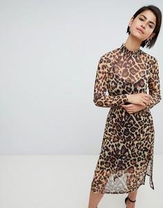 e739e7f6e26 Купить женские платья леопардовые Asos в интернет-магазине Lookbuck