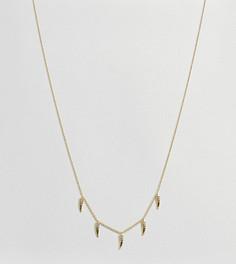 Позолоченное ожерелье с роговыми подвесками Orelia - Золотой