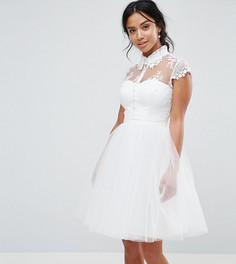 Короткое приталенное платье с кружевным воротником Chi Chi London Petite - Белый