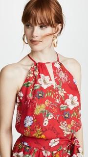 Parker Larissa Dress