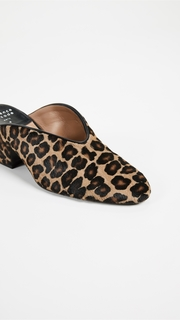 Laurence Dacade Rissy Mules