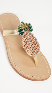 Mystique Pineapple Thong Sandals