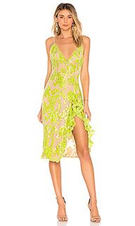 Кружевное миди-платье dragonfly - NBD