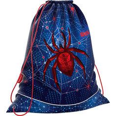 Мешок для обуви ErichKrause, Spider