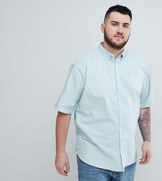 Базовая оксфордская рубашка с короткими рукавами D-Struct PLUS - Синий