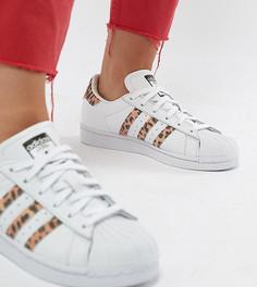 Кроссовки с леопардовым принтом adidas Originals Superstar - Черный