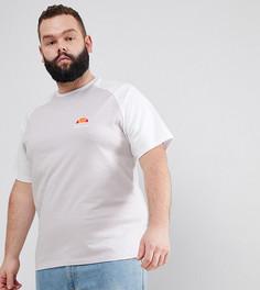 Сиреневая футболка с рукавами реглан и логотипом ellesse PLUS эксклюзивно для ASOS - Фиолетовый