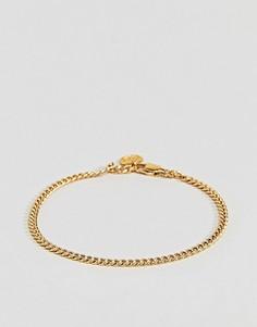 Золотистый браслет-цепочка с крупными звеньями Mister - Золотой