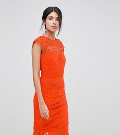 Кружевное платье с фактурной отделкой Paper Dolls Tall - Оранжевый