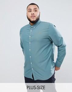 Зеленая приталенная оксфордская рубашка Farah PLUS Brewer - Зеленый