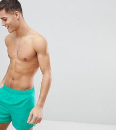 Зеленые короткие шорты для плавания Nike Exclusive Volley Super NESS8509-317 - Зеленый