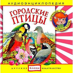 """Аудиоэнциклопедия """"Городские птицы"""", CD Детское издательство Елена"""