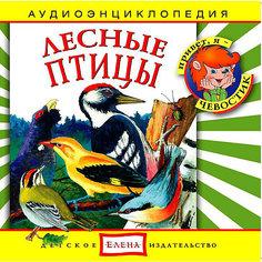 """Аудиоэнциклопедия """"Лесные птицы"""", CD Детское издательство Елена"""