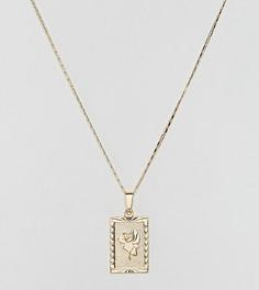 Позолоченное ожерелье с подвеской-розой Rock N Rose - Золотой