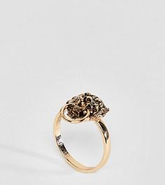 Кольцо с головой льва эксклюзивно для ASOS DESIGN Curve - Золотой