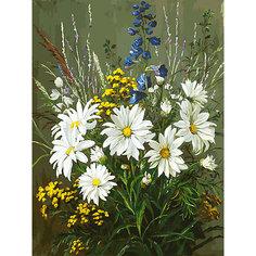 Картина по номерам Белоснежка «Полевые ромашки», 30x40 см
