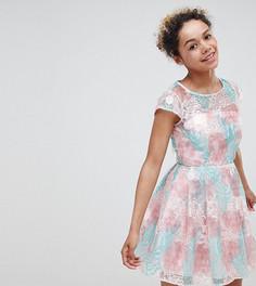 Короткое приталенное платье с цветами ASOS EDITION petite - Мульти