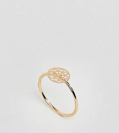 Золотистое кольцо на мизинец с филигранью ASOS DESIGN Curve - Золотой