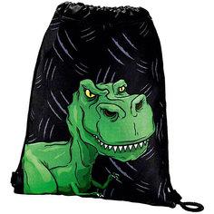 """Мешок для обуви Hama """"Dino"""""""