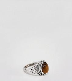 Кольцо с тигровым глазом Sacred Hawk - Серебряный