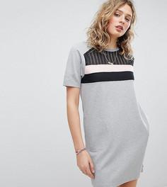 Трикотажное платье с сетчатой вставкой эксклюзивно от Maison Scotch - Мульти