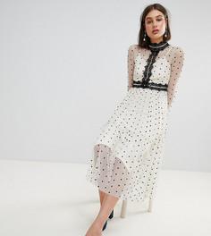 Платье миди в горошек с кружевными вставками Lace & Beads - Кремовый