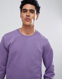 Фиолетовый свитшот Burton Menswear - Фиолетовый