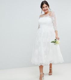 Кружевное платье миди для выпускного/свадьбы ASOS EDITION Curve - Белый