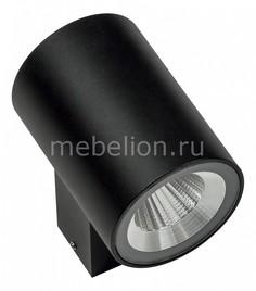 Светильник на штанге Paro LED 351672 Lightstar